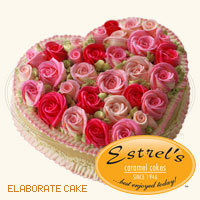 estrels2